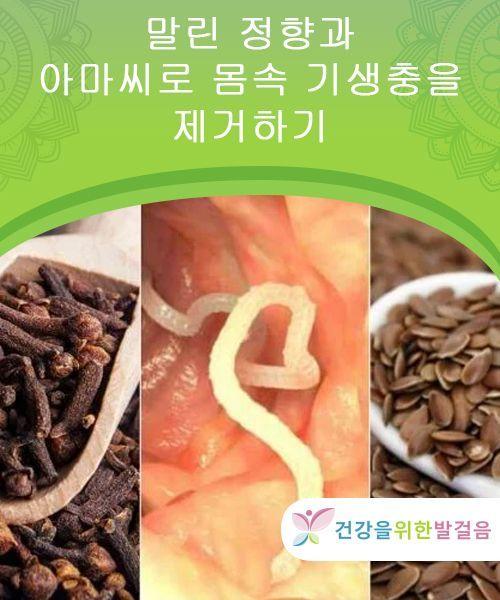 말린 정향과 아마씨로 몸속 기생충을 제거하기 건강을 위한 발걸음 영양 자연요법 음식