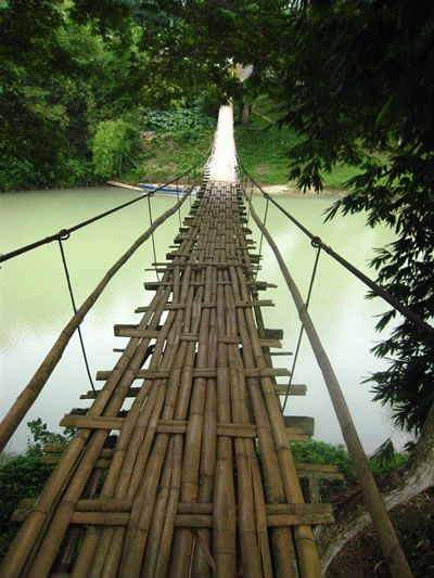 Bamboo construction: