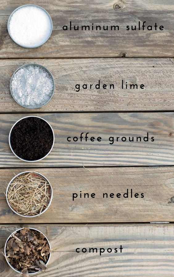 How to change your soil pH                                                                                                                                                      More