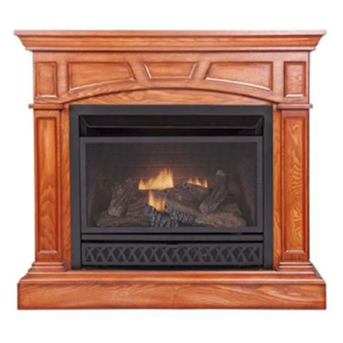 Fuel Gas Fireplaces And Gas Fireplaces On Pinterest