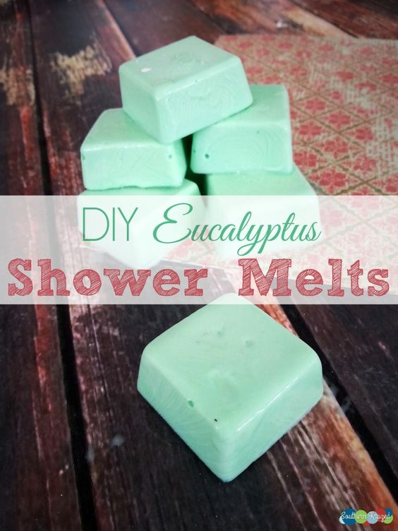 DIY Eucalyptus Shower Melts