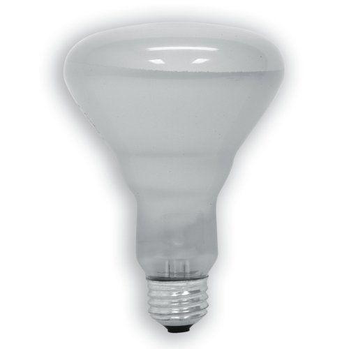 Philips Indoor Dimmable Br40 Flood Light Bulb 2710 Kelvin 65 Watt Medium Screw Base Soft White 12 Pack Bulb Light Bulb Recessed Lighting Fixtures