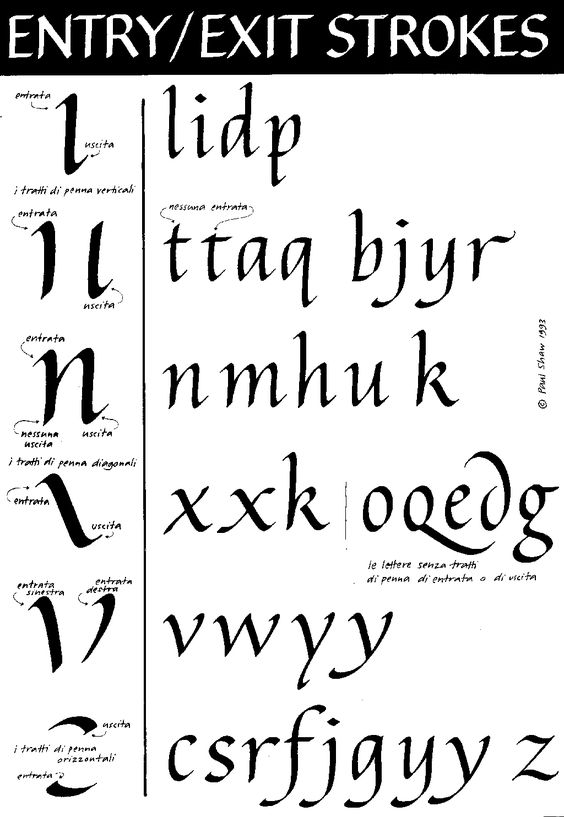 Italic calligraphy alphabet tutorial no