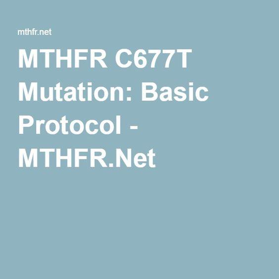 mthfr mutation basic protocol