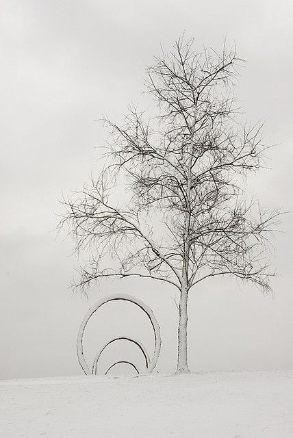 The Museum Park in winter  ©NCMA