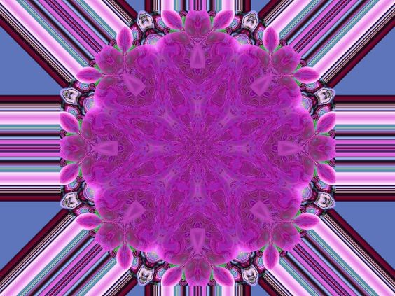 floral kaleidoscope