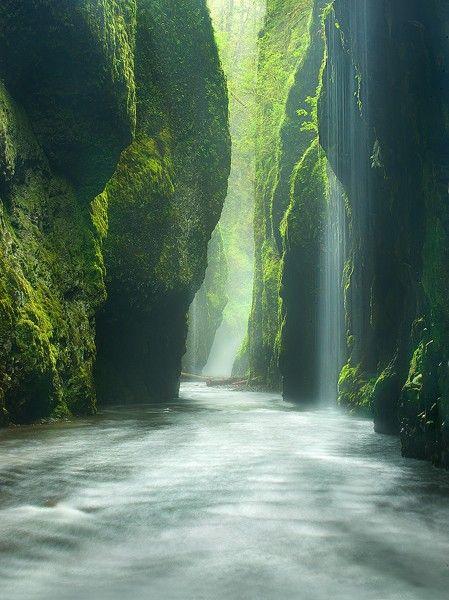 Globetrotter's Wanderlust: Oneonta Gorge, Oregon, United States of America