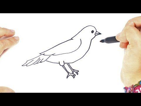 Como Dibujar Un Pajarito Para Ninos Dibujo De Pajarito Paso A Paso Youtube En 2020 Pajarito Dibujo Dibujos De Pajaro Como Dibujar