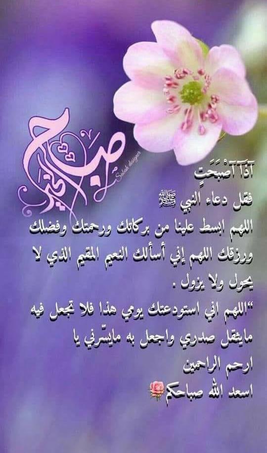 صباح الخير Good Evening Messages Good Morning Greetings Morning Greeting