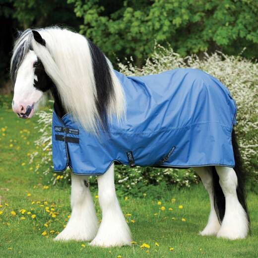 Equestrian Supplies Equine Super