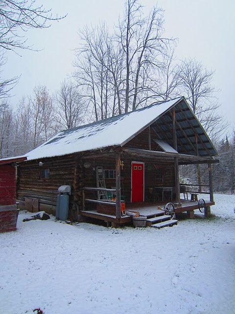 20X20 cabin: