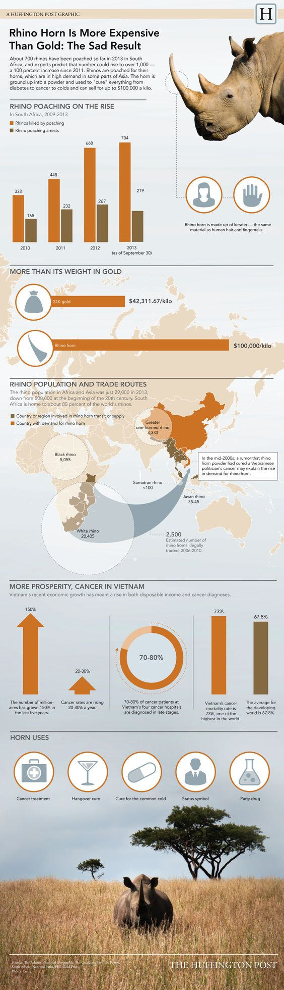 This Infographic Will Make You Realize Just How Bad Rhino Poaching Is