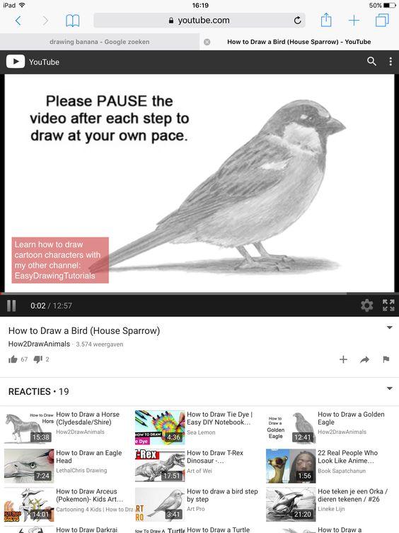 Deze video helpt mij bij een tekening voor de vogel