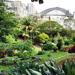 Wendy's Secret Garden, Lavender Bay / Sydney /  18 Magical Places You Won't Believe Are Actually In Sydney