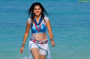 Taapsee HD Wallpapers