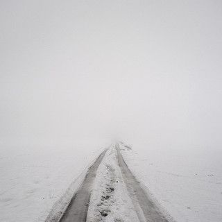 into the white | Flickr - Photo Sharing!