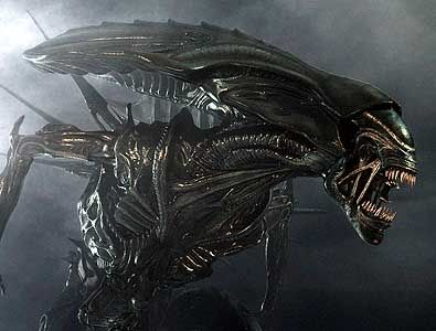 The Xenomorph from Alien/Aliens