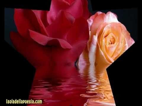 Poesie d'amore e romantiche di poeti
