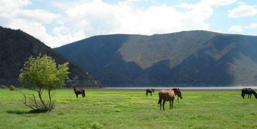 Reserva de la Biosfera Barranca de Metztitlán