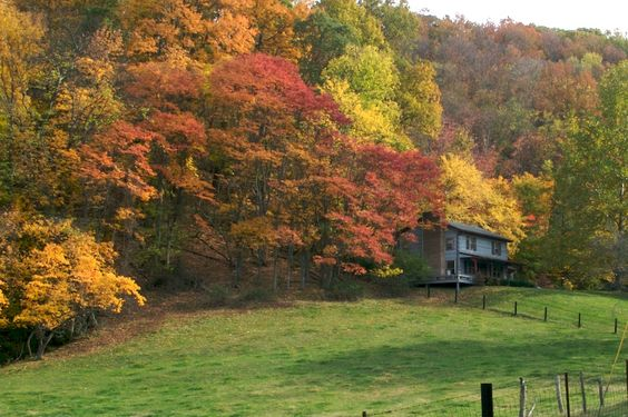 i LOVE fall in Tennessee