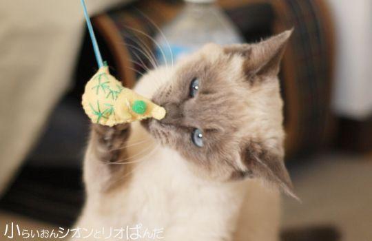 ねずみくんチュチュチュでがおー!!! - http://iyaiyahajimeru.jp/cat/archives/52616