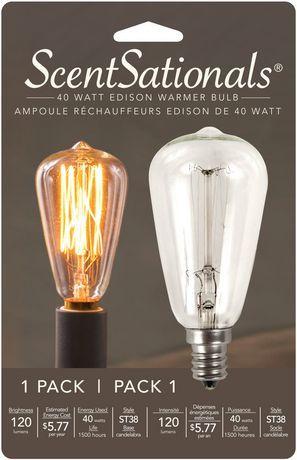 Scentsationals Scentsationals 40 Watt Edison Warmer Bulb Multi