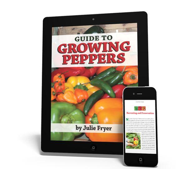Get a FREE Pepper Gardening ebook from Clovers!