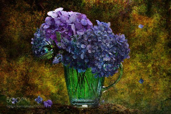 still life with blue hydrangeas by shumilu