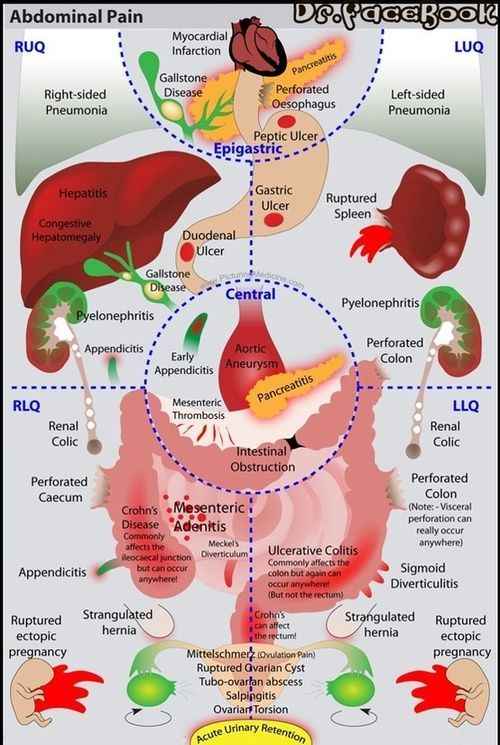 Abdominal pain symptoms chart liver pain location causes