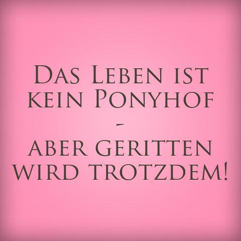 Ponyhof :-D