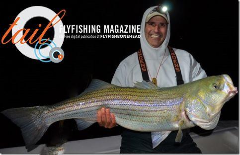 http://www.wholesalebasslures.com Wholesale Bass Lures  Huge striped bass