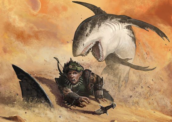 Image représentant un requin des sables