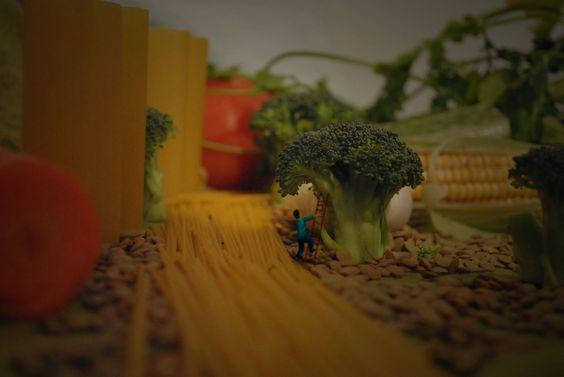 Bosque de vegetales... :)