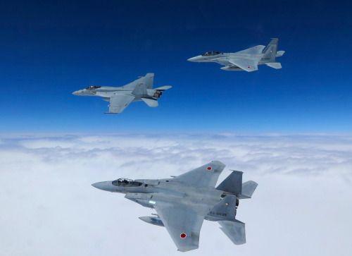 F-15DJ JADSF