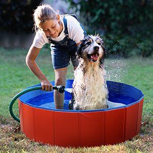 Pin On Dog Pool Portable