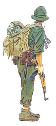 Soldado Viet Cong, Fuerzas principales, 1968.