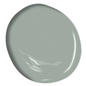 Greyhound 1579 | Benjamin Moore