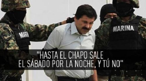 Memes Del Chapo Guzman!