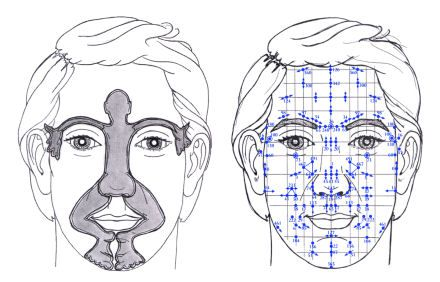 """Dien Chan (réflexologie faciale) : Drainage lymphatique ou """"massage six zones"""" + 12 massages du matin 586bc9c6921496d904e86287f534dc21"""