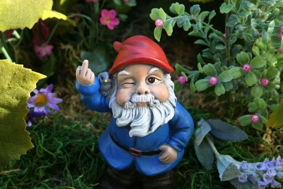 I want one!: Gnome Flipping, Guy, Naughty Gnome, Garden Gnomes, Front Yard, Yard Gnome, Lawn Gnome, Rude Gnome, Gnome Garden