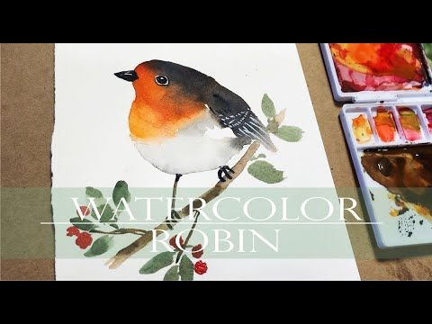 Watercolor Painting For Beginners Robin Bird Animals Step By