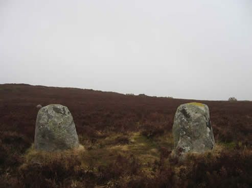 Gossaun Stones The Gossaun Stones are a pair of standing stones located on the ridge between Scarr and Paddock Hill. They mark a viewing point for the rising sun on the equinnoxes. This photo was taken at the spring equinnox in 2009, but as you can see, the day was disappointingly overcast.  Photo: Ben McCabe, NPWS