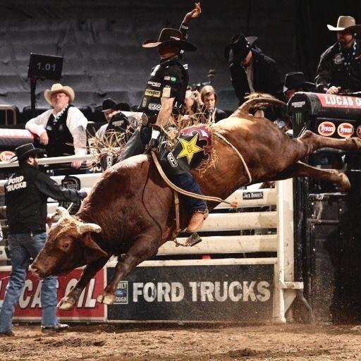 Gaddamm Jack Bull Riding Bull Riding Quotes Bull Riders