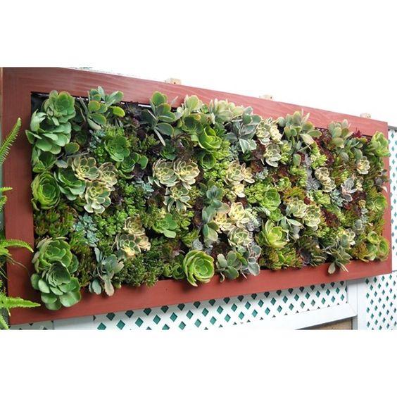 Low Budget Garden Ideas Gardening Ideas On A Budget