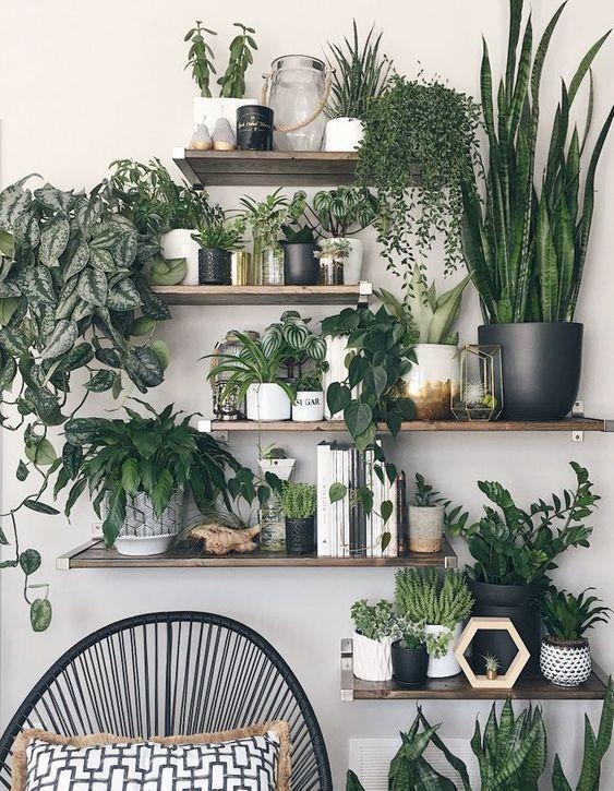 Ce salon a misé sur un corner végétal avec la multiplication d'étagères
