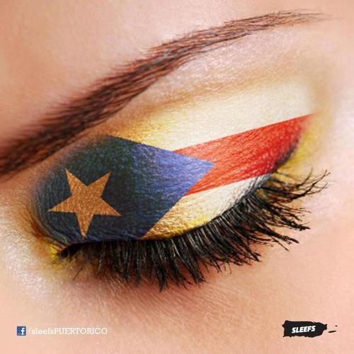 La bandera de mi bella Isla Puerto Rico/ The Puerto Rico Flag.