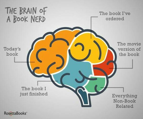 Books on the brain - the brain of a book nerd!:
