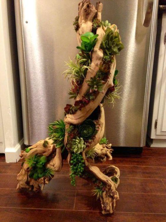 Unique wood succulent gardens ideas - SHW Home Decor #woodsucculentgardenideas