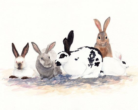rabbit painting- Bunnies- watercolor animal print: