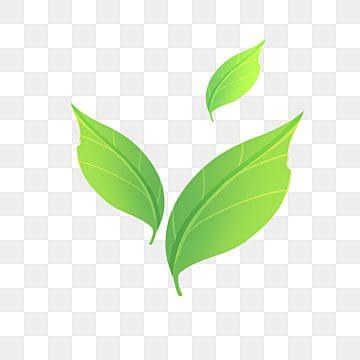 Tea Toter Logo Component By Djohnn On Deviantart Tea Leaves Tattoo Tea Logo Tea